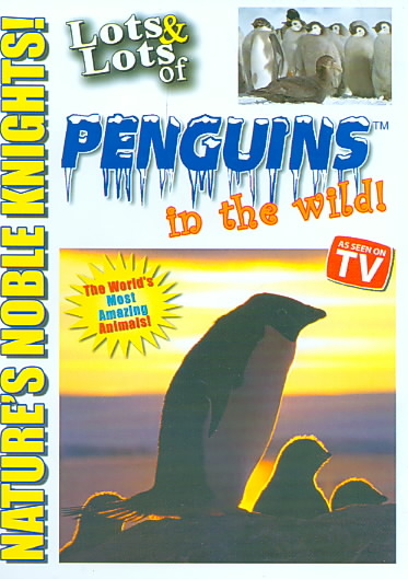 LOTS AND LOTS OF PENGUIN IN THE WILD BY LOTS AND LOTS (DVD)